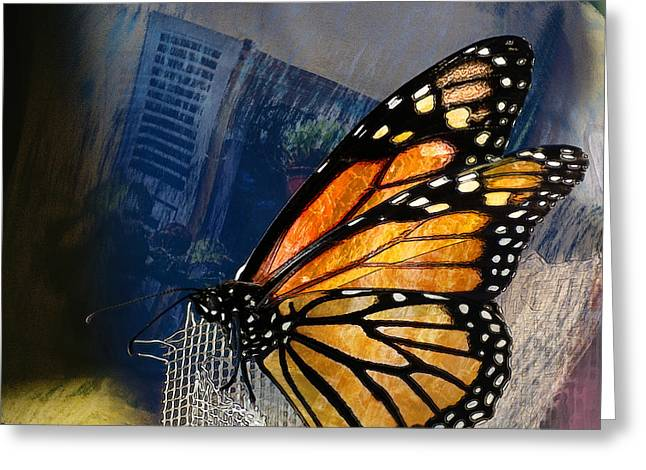 Square Format Greeting Cards - Reve de Papillon  Greeting Card by Variance Collections