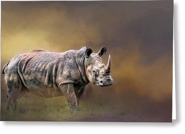 Print Photographs Greeting Cards - Rhino Greeting Card by Maria Coulson