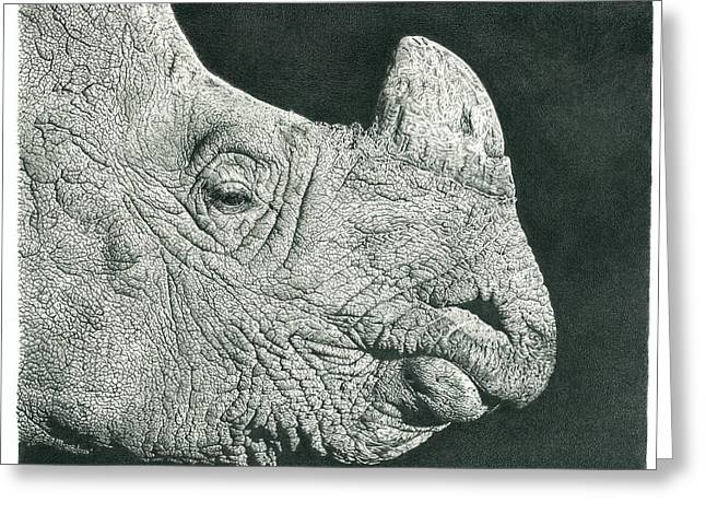 Wild Life Drawings Greeting Cards - Rhino Pencil Drawing Greeting Card by Heidi Vormer