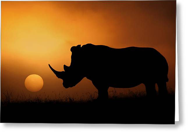 Rhinos Greeting Cards - Rhino Sunrise Greeting Card by Mario Moreno