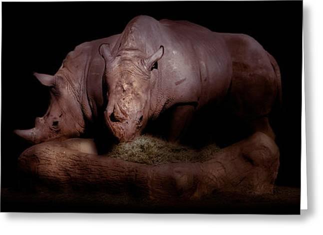 Rhinoceros Greeting Cards - Rhinoceros Greeting Card by Sami Matar