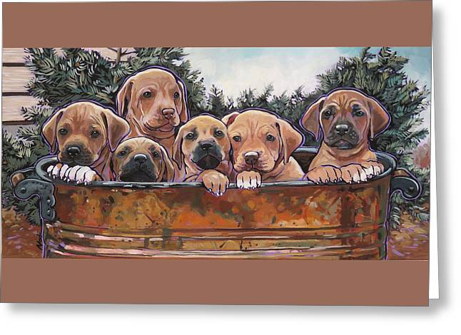Nadi Spencer Greeting Cards - Rhodesian Ridgeback Puppies Greeting Card by Nadi Spencer
