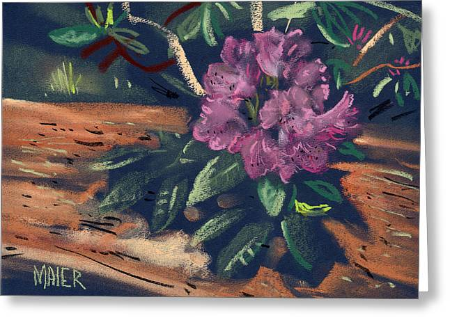 Rhododendrons Greeting Cards - Rhododendron Greeting Card by Donald Maier
