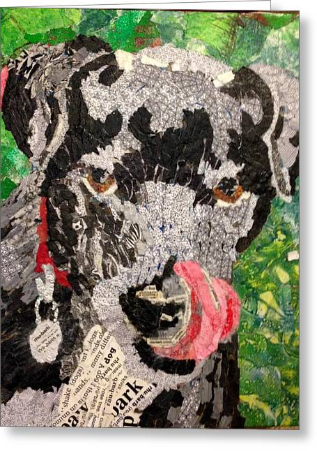 Mixed Labrador Retriever Mixed Media Greeting Cards - Rhubarb - Black Lab Greeting Card by Sandy Karsten
