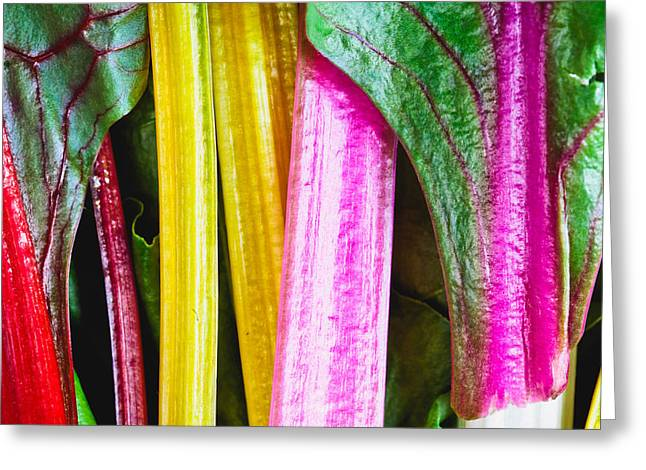 Passion Fruit Photographs Greeting Cards - Rhubarb skin Greeting Card by Tom Gowanlock