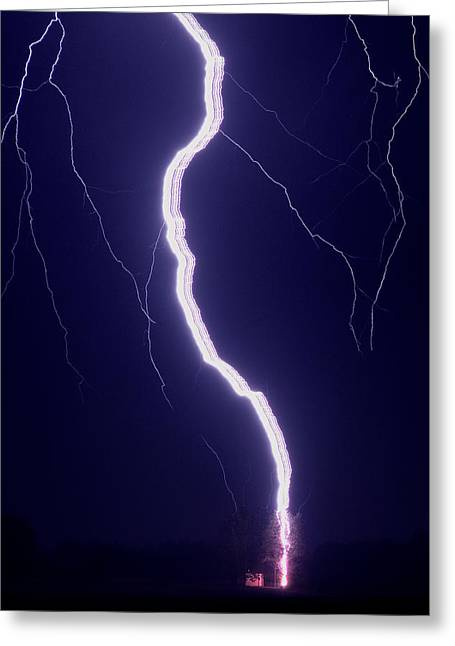 Lightning Greeting Cards - Ribbon Lightning Hits A Tree Greeting Card by Przemyslaw Wielicki