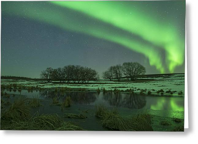 Edmonton Photographer Greeting Cards - Ribbon Greeting Card by Mike Isaak