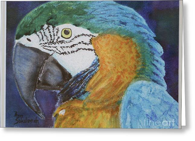 Sokolovich Paintings Greeting Cards - Ricco Greeting Card by Ann Sokolovich