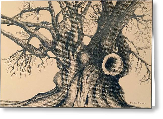 Gnarly Drawings Greeting Cards - Rich in memories Greeting Card by Jolanta Benson