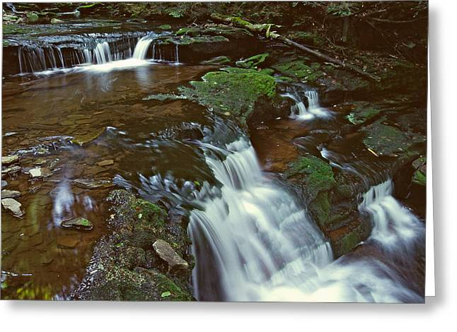 Lush Green Digital Greeting Cards - Ricketts Glen falls 006 Greeting Card by Scott McAllister