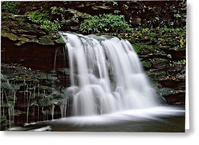 Lush Green Digital Greeting Cards - Ricketts Glen falls 022 Greeting Card by Scott McAllister
