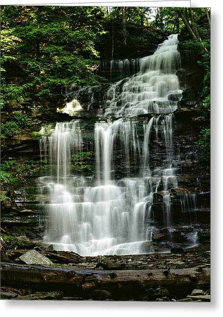 Lush Green Digital Greeting Cards - Ricketts Glen falls 023 Greeting Card by Scott McAllister