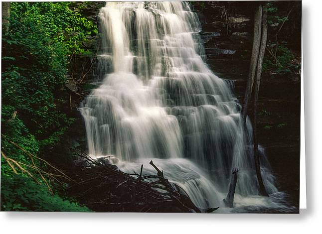 Lush Green Digital Greeting Cards - Ricketts Glen falls 025 Greeting Card by Scott McAllister