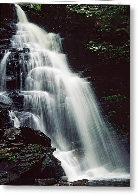 Lush Green Digital Greeting Cards - Ricketts Glen falls 027 Greeting Card by Scott McAllister