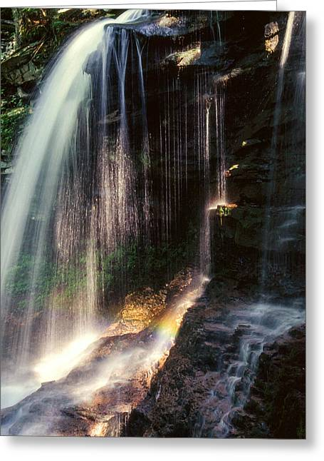Lush Green Digital Greeting Cards - Ricketts Glen falls 028 Greeting Card by Scott McAllister
