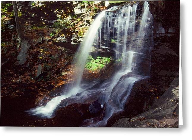 Lush Green Digital Greeting Cards - Ricketts Glen falls 029 Greeting Card by Scott McAllister