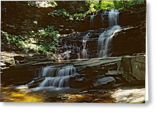 Lush Green Digital Greeting Cards - Ricketts Glen falls 031 Greeting Card by Scott McAllister