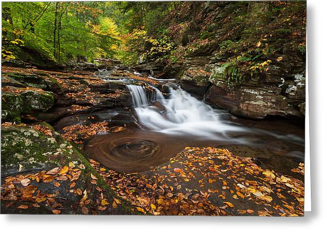 Quaker Greeting Cards - Ricketts Glen State Park Pennsylvania Autumn Waterfall Scenic Greeting Card by Mark VanDyke