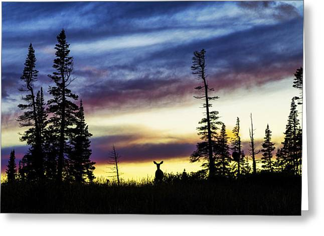 Ridge Sihouette Greeting Card by Chad Dutson