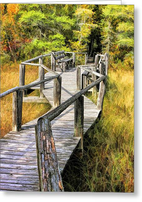 Ridges Sanctuary Crossing Greeting Card by Christopher Arndt