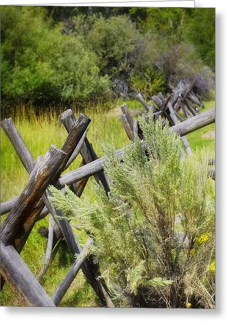 ist Photographs Greeting Cards - Riding The Fence Line Greeting Card by Image Takers Photography LLC - Laura Morgan
