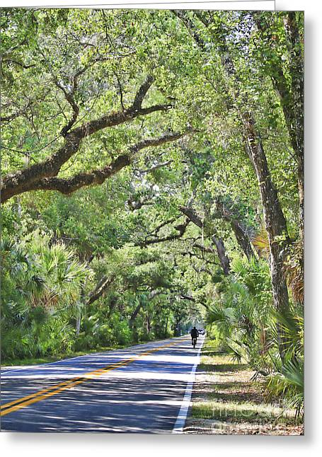 Deborah Benoit Greeting Cards - Riding The Ormond Loop Greeting Card by Deborah Benoit