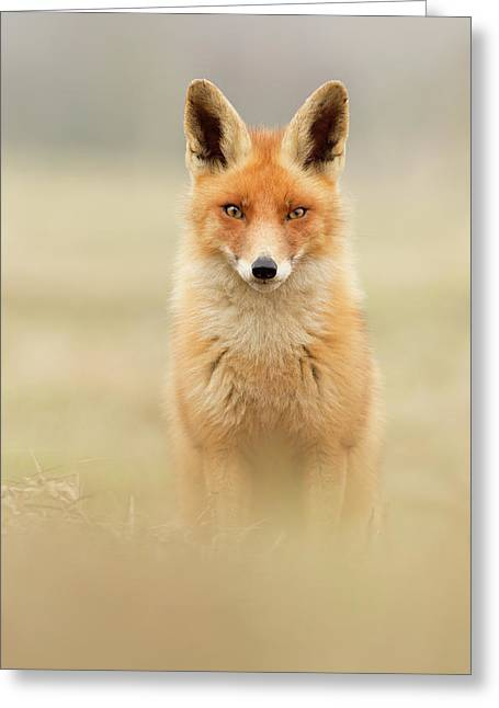 Right Into Your Soul - Red Fox Greeting Card by Roeselien Raimond