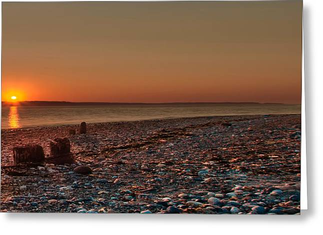 Beaches In Washington Greeting Cards - Right The Last Goodbye Greeting Card by James Heckt
