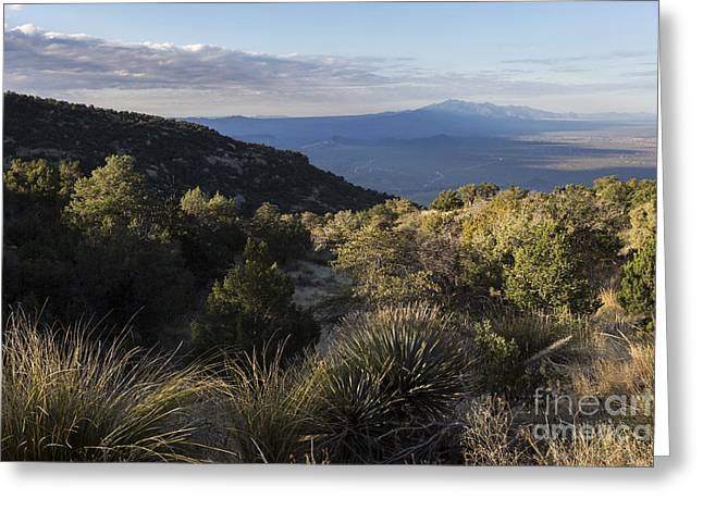 Rincon Greeting Cards - Rincon Valley Below Mica Mountain Greeting Card by Mike Cavaroc