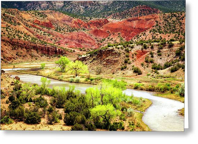 Chama River Greeting Cards - Rio Chama Overlook 2 Greeting Card by Diana Powell
