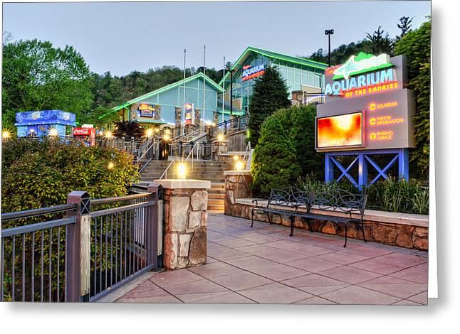Gatlinburg Tennessee Greeting Cards - Ripleys Aquarium of the Smokies Greeting Card by Greg Mimbs