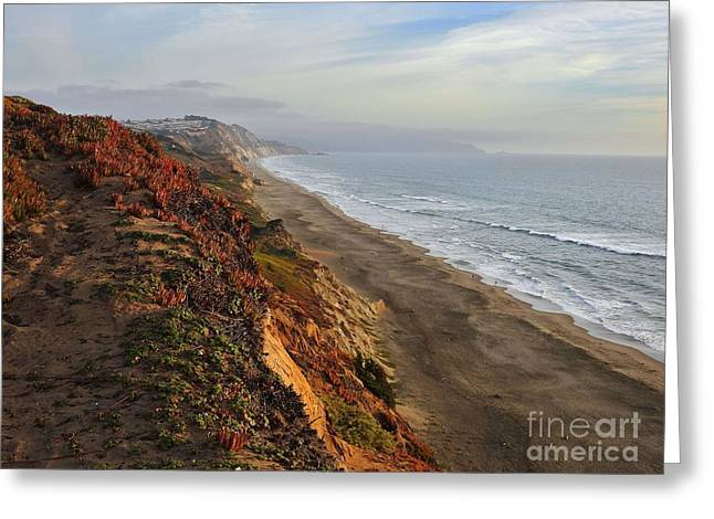 Beach Photos Greeting Cards - Rippled by Wind and Water Greeting Card by Scott Cameron