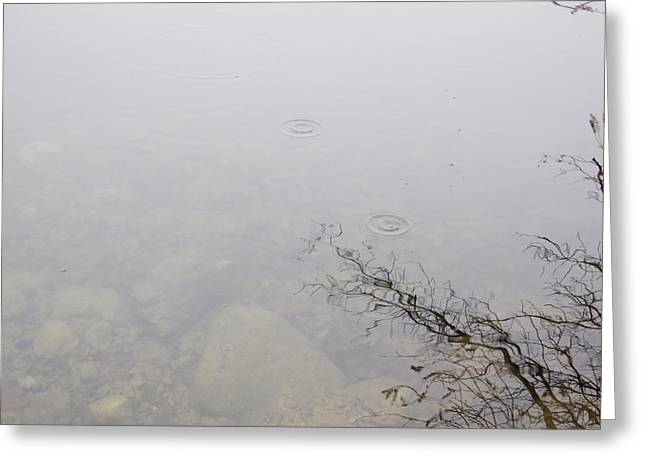 Pensive Greeting Cards - Ripples Greeting Card by Angela Hansen