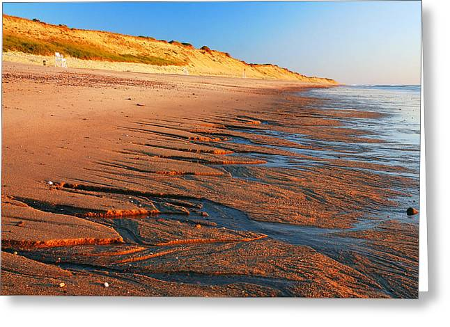 Marconi Beach Greeting Cards - Ripples at the the Shoreline Greeting Card by James Kirkikis