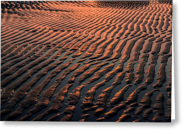Sand Pattern Greeting Cards - Ripples in the Morning Greeting Card by Tim Kirchoff