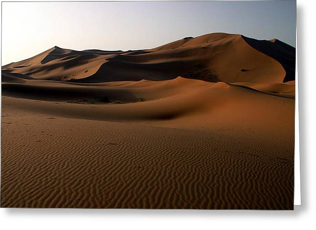 Northern Africa Greeting Cards - Ripples In The Sand Greeting Card by Ralph A  Ledergerber-Photography
