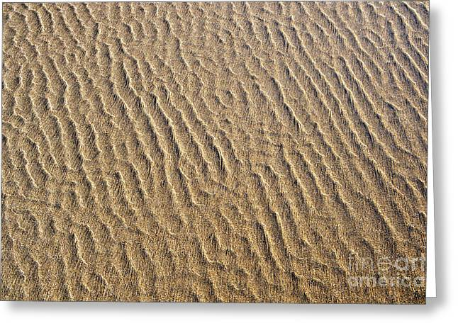 Ripples In The Sand Greeting Card by Tim Gainey