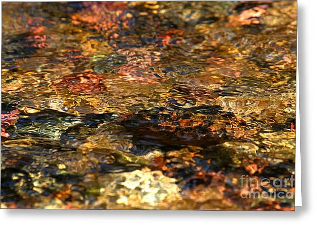 North Fork Greeting Cards - Ripples Of Tranquility Greeting Card by Adam Jewell
