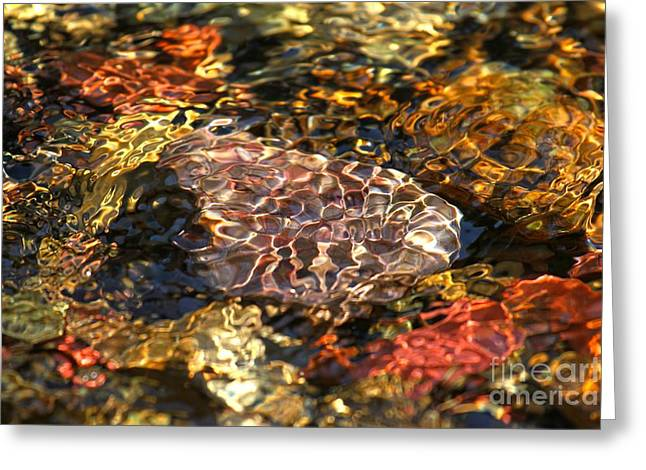 North Fork Greeting Cards - Ripples Of Zen Greeting Card by Adam Jewell