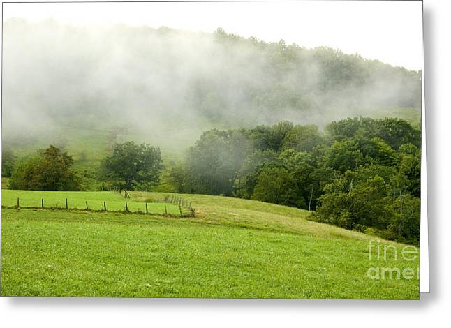 Allegheny Greeting Cards - Rising Mist over Pasture Field Greeting Card by Thomas R Fletcher