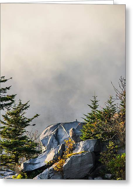 Rocks Greeting Cards - Rising Mist Greeting Card by Shelby Young