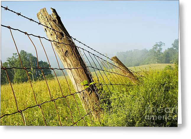 Allegheny Greeting Cards - Rising Mist with Falling Fence Greeting Card by Thomas R Fletcher