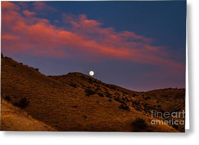 Emmett Valley Greeting Cards - Rising Moon Greeting Card by Robert Bales
