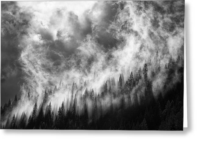 Mist Greeting Cards - Rising Greeting Card by Thomas Haney