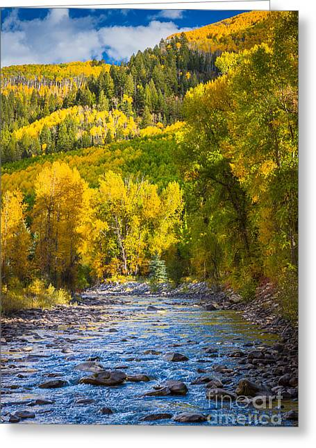 Direction Greeting Cards - River and Aspens Greeting Card by Inge Johnsson