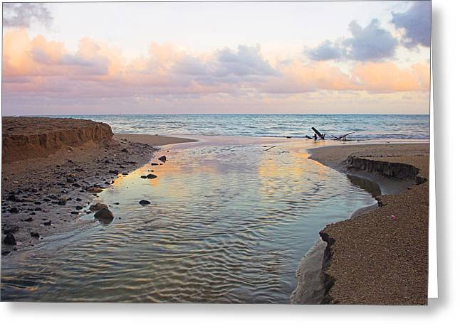 St Lucia Greeting Cards - River and Sunrise- St Lucia Greeting Card by Chester Williams