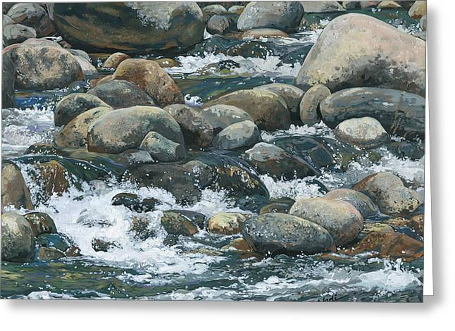 Nadi Spencer Greeting Cards - River at Sierra Subs Greeting Card by Nadi Spencer