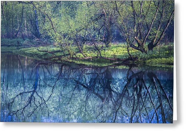 Pond In Park Greeting Cards - River Blues Greeting Card by Debra and Dave Vanderlaan