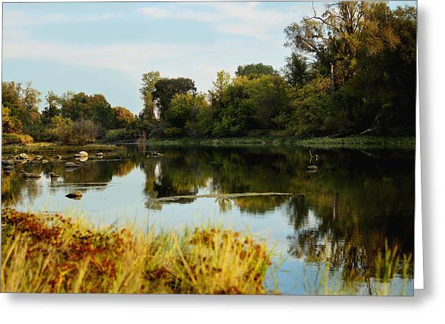 River Bypass Greeting Card by Pamela Patch