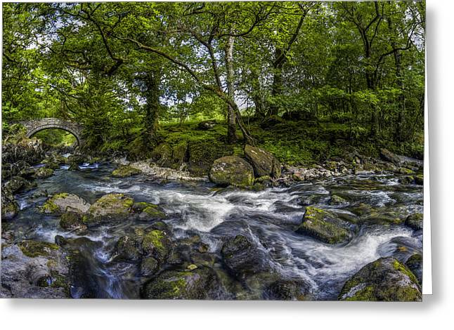 Woodland Scenes Greeting Cards - River Conwy Greeting Card by Ian Mitchell